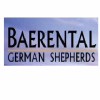 Baerental german shepherd
